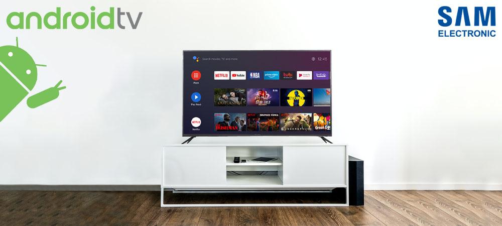 سایر ویژگی های تلویزیون سام الکتریک مدل 58TU6550